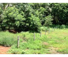 25 Cent Residential land ( Full or Plots ) FOR SALE at Edappal