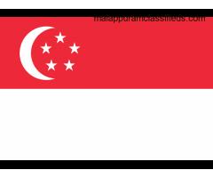 Cách chuyển tiền từ Việt Nam sang Singapore
