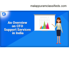 CFO Support Service in India - Enterslice