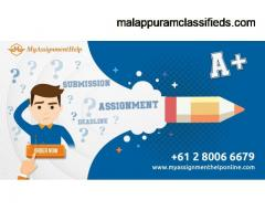 My Assignment Help Online