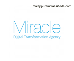 Best Digital Marketing, Web Development Solution for SME in HK - Miracle Digital